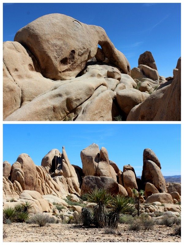 Joshua Tree National Park - Arch Rock
